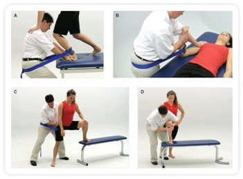 Manual Therapy 1